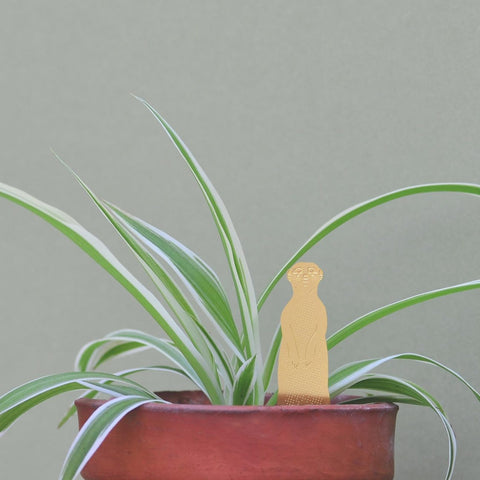 ANOTHER STUDIO Plant Animals 'Meerkat'