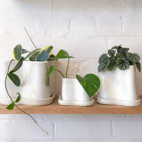 NATALIE ROSIN Puddle Planter | White