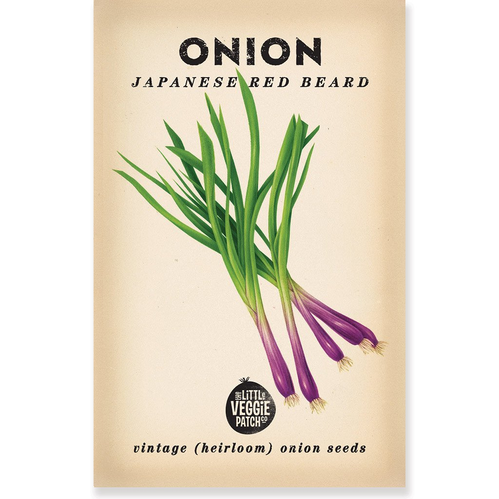 "The Little Veggie Patch Co ONION ""JAPANESE RED BEARD"" HEIRLOOM SEEDS"