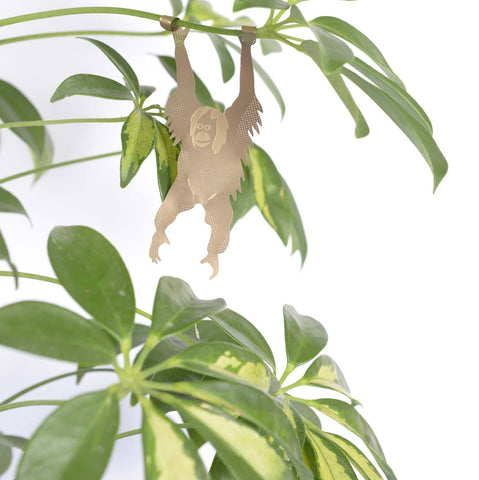 ANOTHER STUDIO Plant Animals 'Hanging Orangutan'