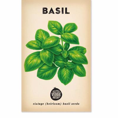 The Little Veggie Patch Co BASIL 'LARGE SWEET GENOVA' HEIRLOOM SEEDS