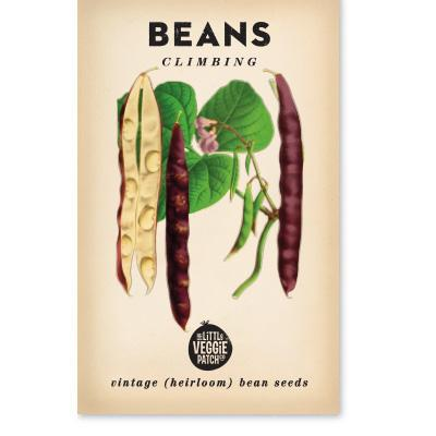 The Little Veggie Patch Co BEANS CLIMBING 'SCARLETT RUNNER' HEIRLOOM SEEDS
