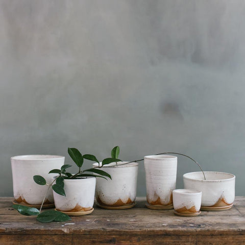 LEAF AND THREAD Stoneware Planter + Saucer | Glacier
