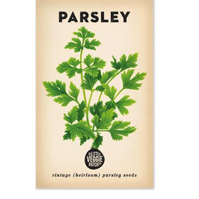 The Little Veggie Patch Co PARSLEY 'ITALIAN' HEIRLOOM SEEDS