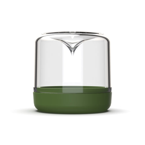 BOTANICA BOUTIQUE Sanctuary Mini Terrarium | Bottle Green