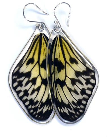 PAPER KITE BUTTERFLY TOP WING EARRINGS