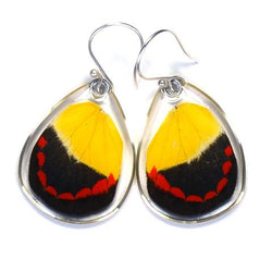 TIMOR BUTTERFLY BOTTOM WING EARRINGS
