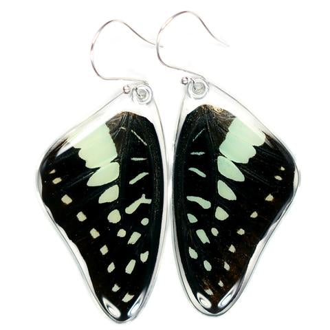 PALE GREEN TRIANGLE BUTTERFLY TOP WING EARRINGS