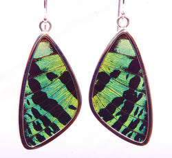 BUTTERFLY EARRINGS LARGE 1.75""