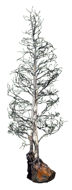 AUTUMN ASPEN TREES WIRE SCULPTURE