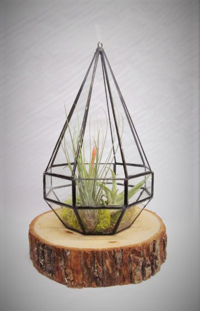 BLACK GEOMETRIC HANGING/TABLE TERRARIUM