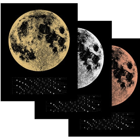 2019 MOON PHASE CALENDAR (SILVER/BLACK)