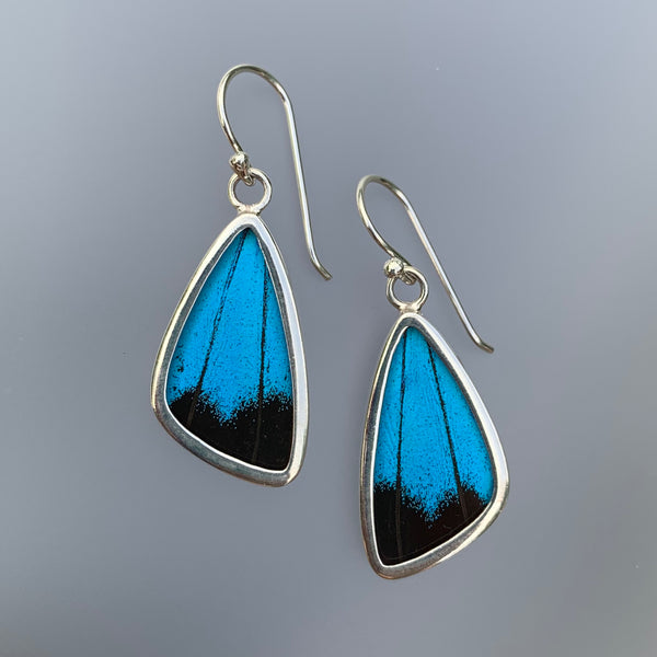 SMALL BUTTERFLY EARRINGS - BLUE WITH BLACK EDGE