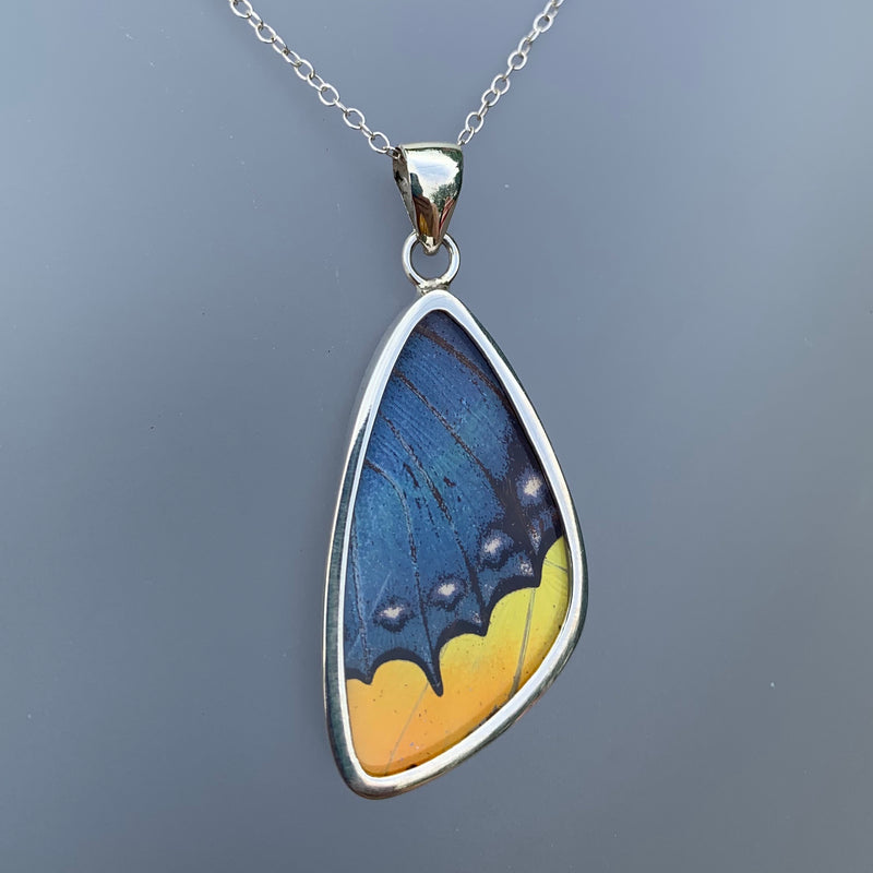 PREMIUM MEDIUM BUTTERFLY PENDANT - BLUE/YELLOW