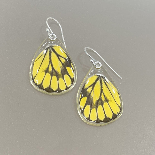 DELIAS GANYMEDES HALCONENSIS BUTTERFLY BOTTOM WING EARRINGS