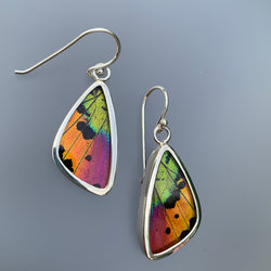 SMALL BUTTERFLY EARRINGS - MULTI IRIDESCENT