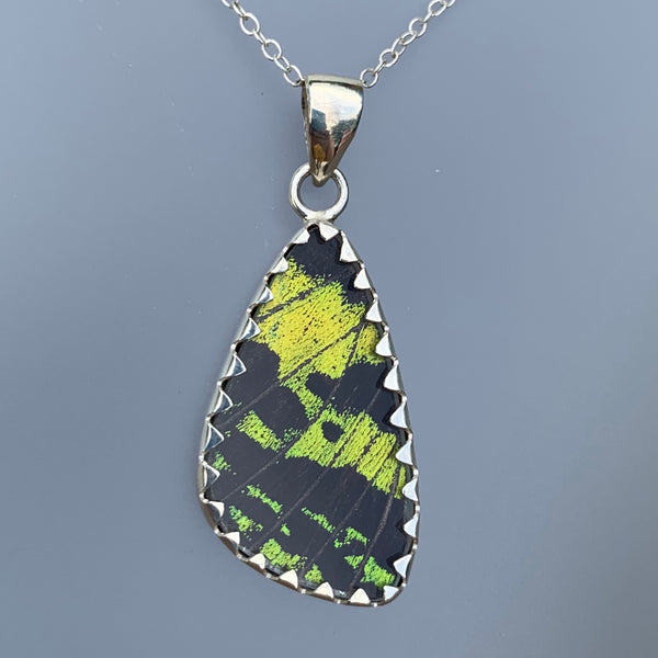 SMALL BUTTERFLY PENDANT - GREEN/BLACK
