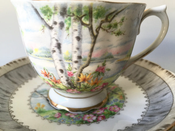 Porcelain - Royal Albert Silver Birch Cup Saucer Plates 4 pcs