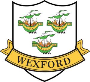 County Stickers CC31 Wexford