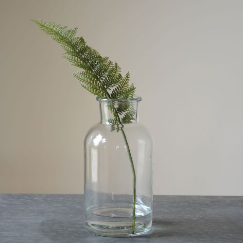 Glass Botanical Vase - Closet & Botts