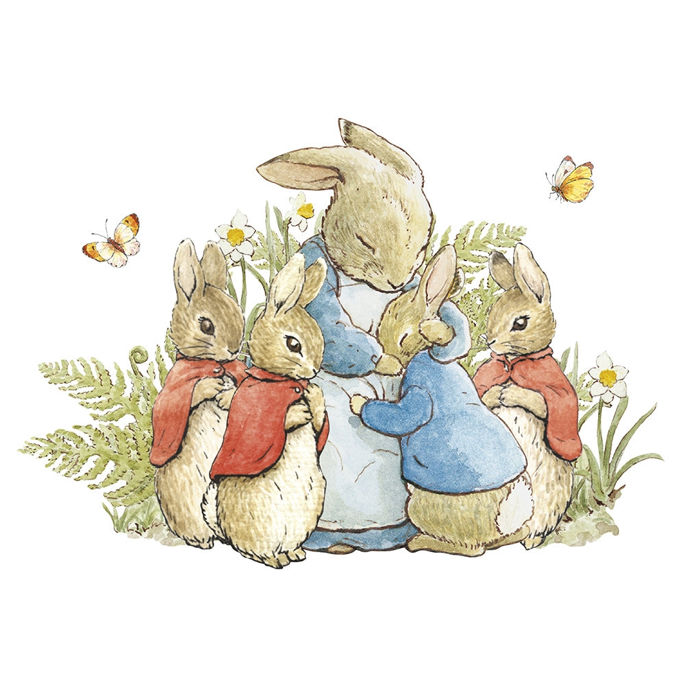 'Peter Rabbit' Greeting Card - closetandbotts