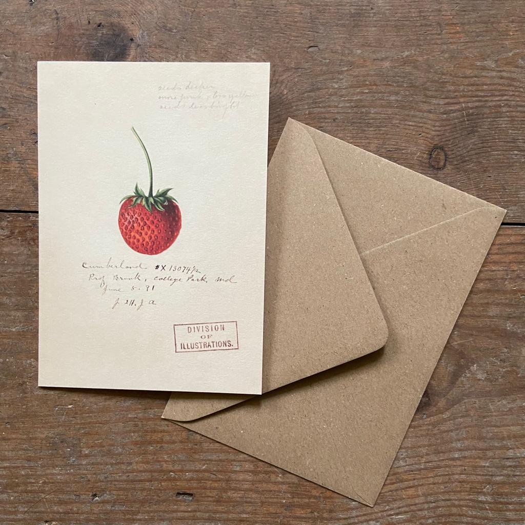 Strawberry Greeting Card - Homeware Store