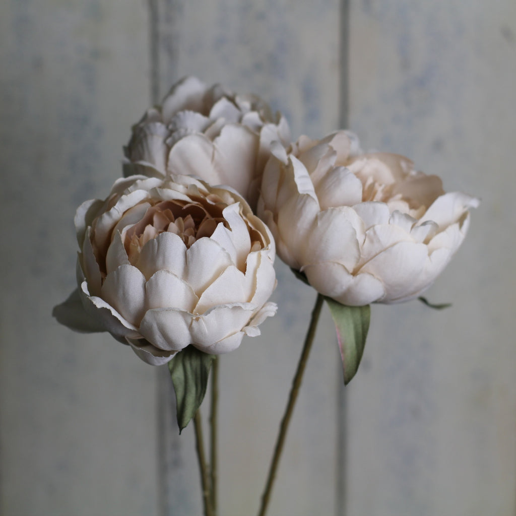 Silk flowers - Single Peony - Homeware Store