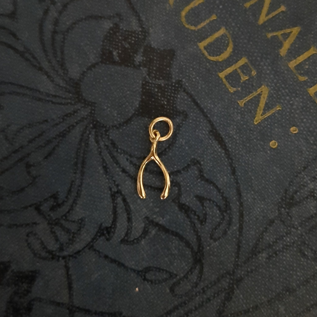 Wishbone Gold Plated Pendant | Gifts for Her | Closet & Botts