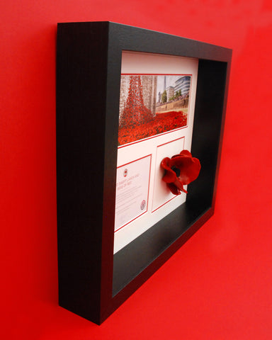 Display frame for London Poppy