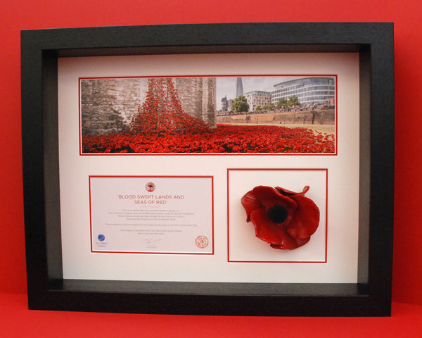 Tower Of London Poppy Display Frame In Black Remembrance