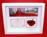 Ceramic poppy display frame in white woos