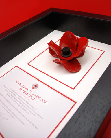 Tower of London Poppy in a black frame