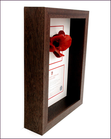 London poppy display frame in brown