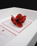 London poppy display frame in white