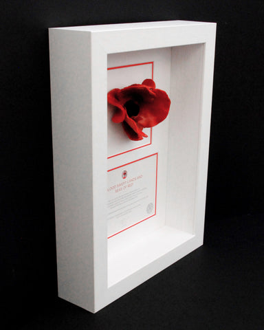 London Poppy Frame in White