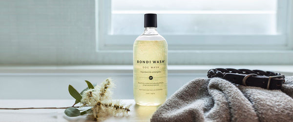 Bondi Wash Paperbark & Lemongrass Dog Wash