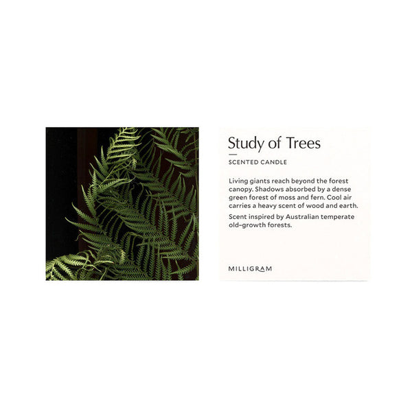 Milligram Scented Candle - Study of Trees