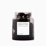 Milligram Scented Volcanic Rock Set - Study of Trees