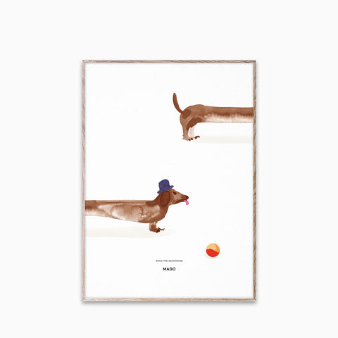 Paper Collective Doug the Dachshund 50x70cm