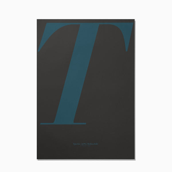Playtype Poster T