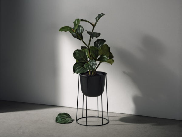 Menu Wire Pot Base Black (S, M or L)