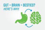 How Your Gut Effects Your Brain | Zenwise Research