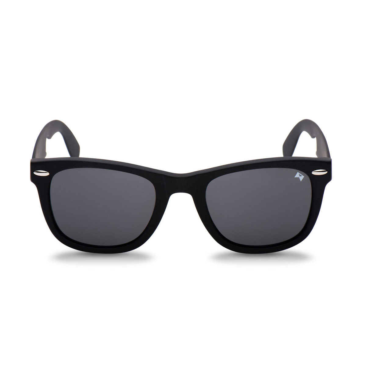 a248f7d9f17 Titanium Sunglasses by William Painter