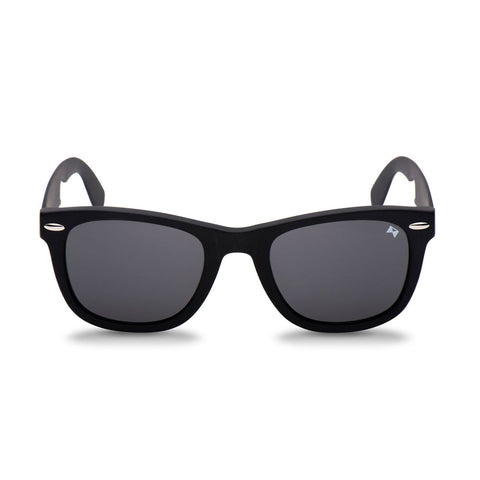d1c8291c28 Titanium Sunglasses by William Painter