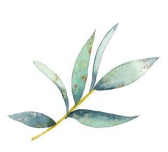 watercolor green and yellow leafy plant branch