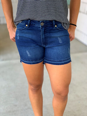 Distressed Released Hem Denim Jean Shorts (2-22)