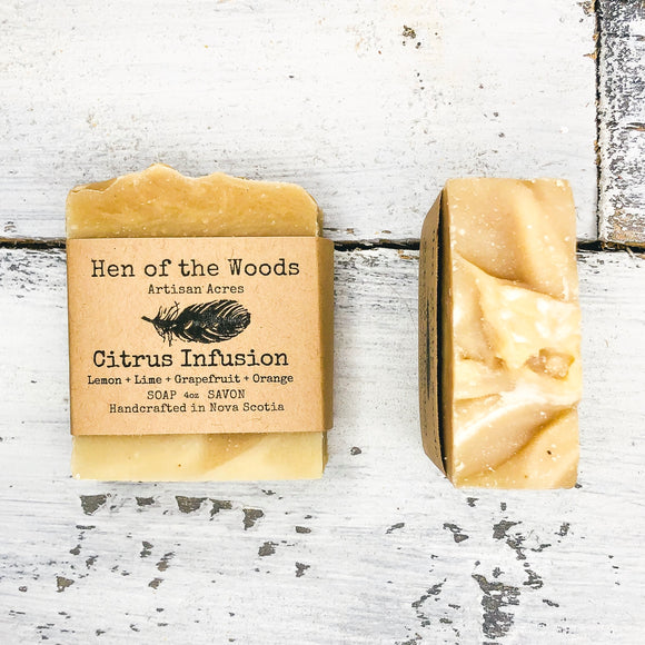 Citrus Infusion Natural Soap