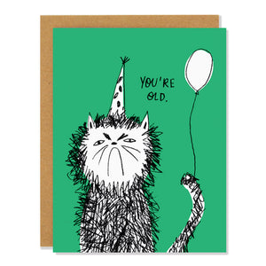You're Old Snitty Kitty Birthday Card