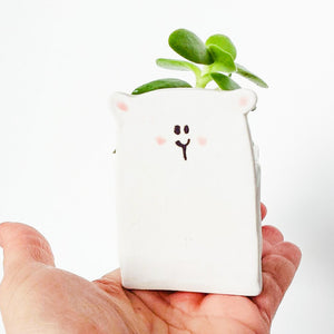 Polar Bear Planter