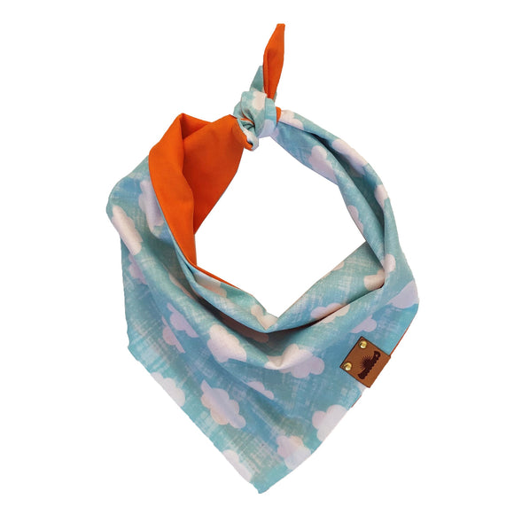 In The Clouds / RESCUE Orange Bandana